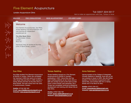 Acupuncture Web Design Artwork