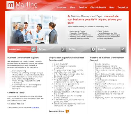 Business Development Web Design Artwork